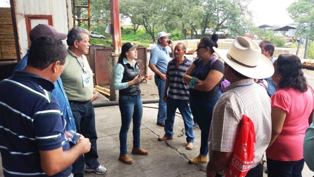 Participa colima en seminario de aprovechamiento forestal for Viveros en colima