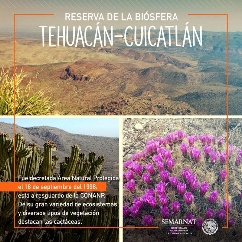 cms uploads image file 197222 18-09-Tehuacan 0471a12b5ea7a
