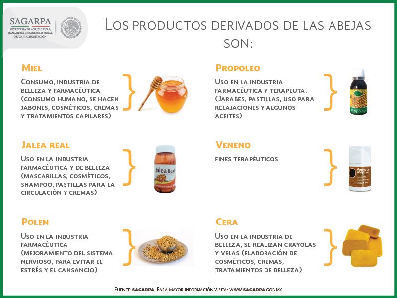 Infografia productos derivados mieljpg