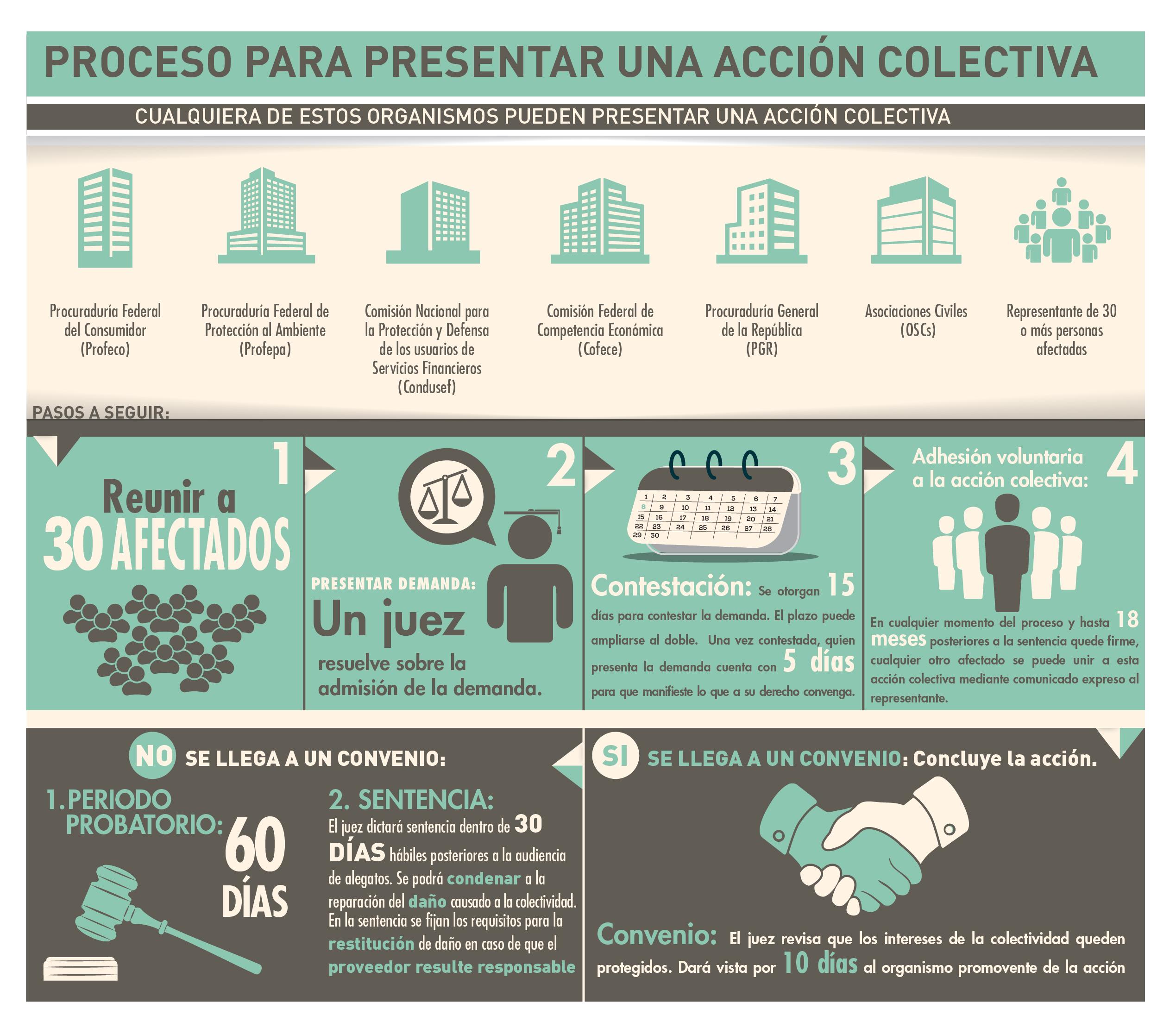 Conoce las Acciones Colectivas de la PROFECO   Secretaría de ...
