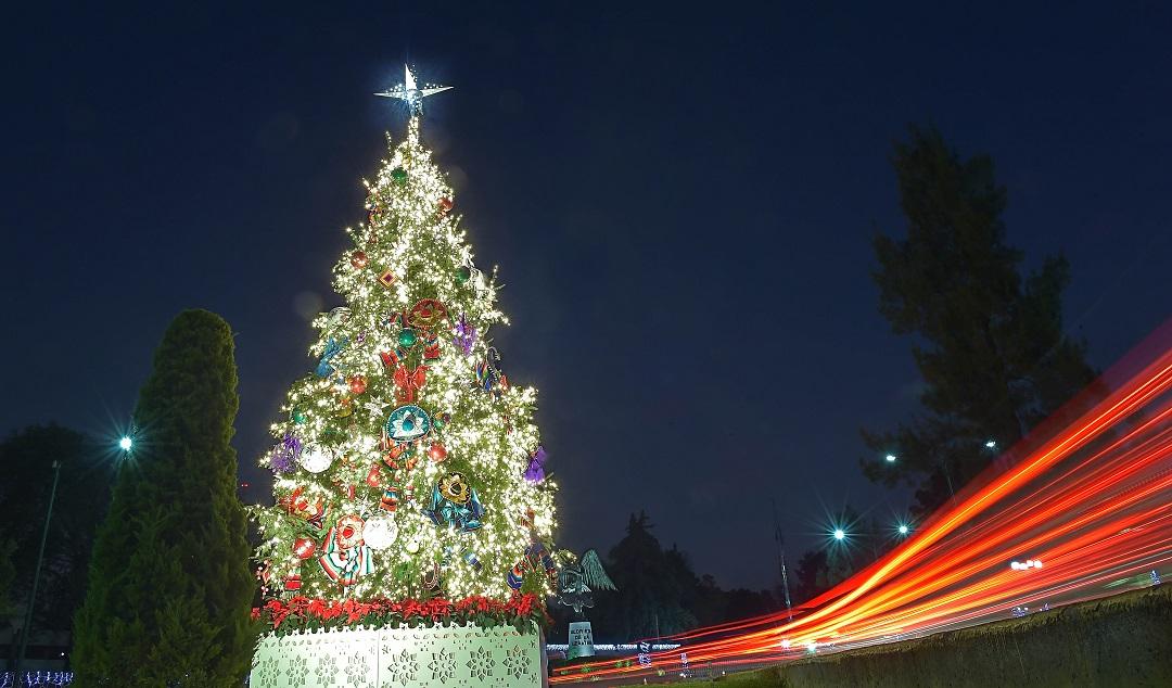 Nuestro rbol comisi n nacional forestal gobierno - Arbol de navidad en ingles ...