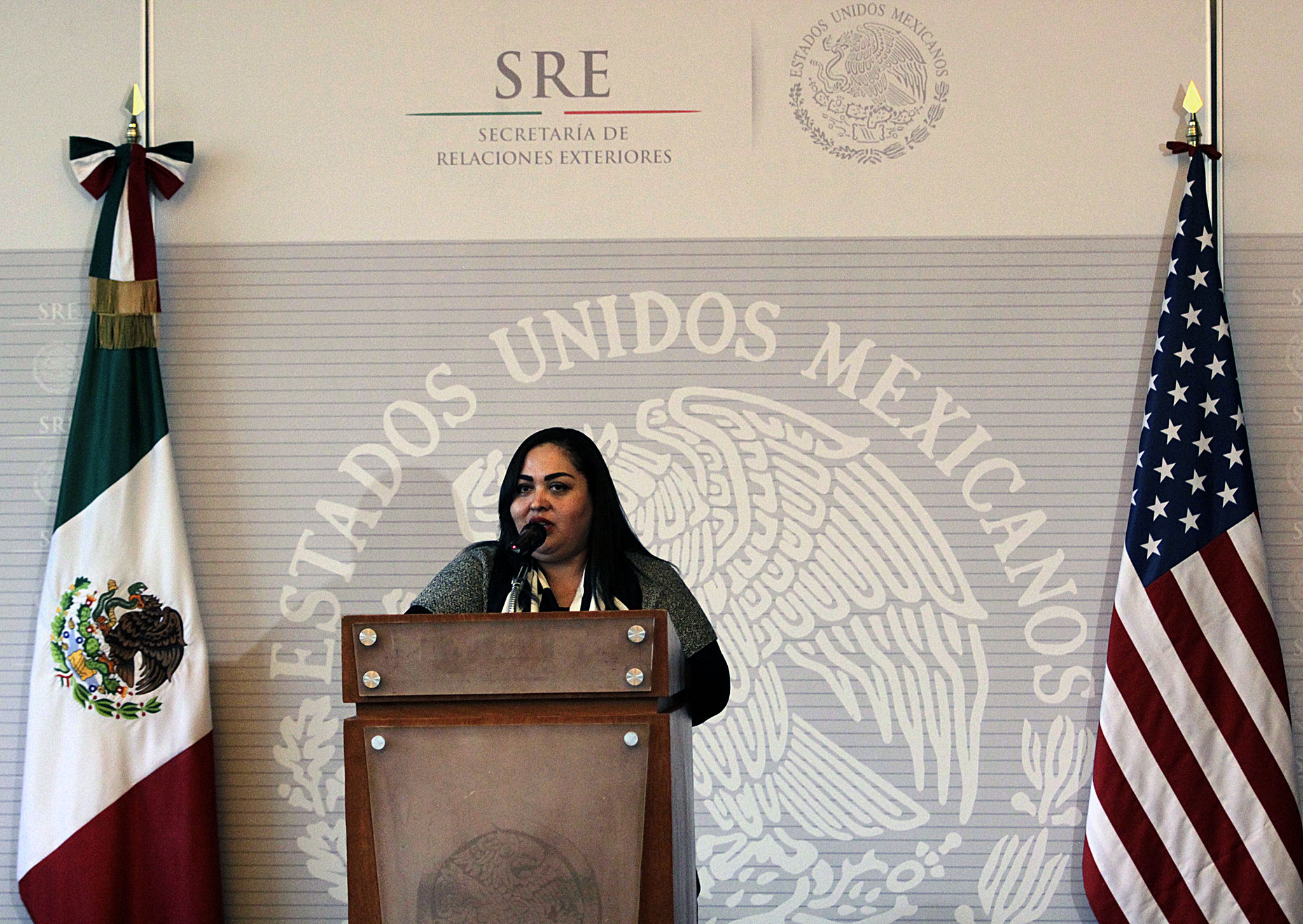 FOTO 1 Embajadora Reyna Torres Mendivil  directora general de Protecci n a Mexicanos en el Exterior.jpg
