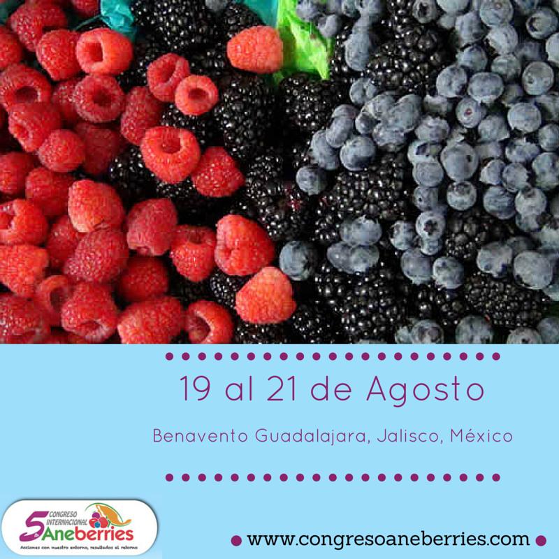 wwwcongresoaneberriescompng