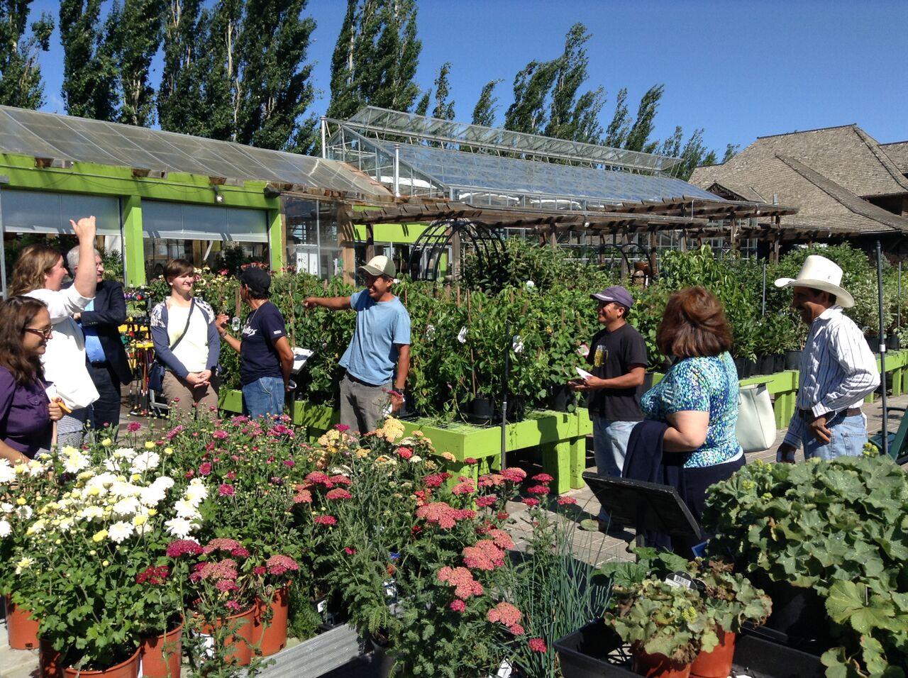 Foto 1 beneficiaarios del Programa de Trabajadores Agr colas Temporalesjpg