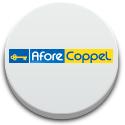 /cms/uploads/image/file/256999/btn_Coppel.jpg