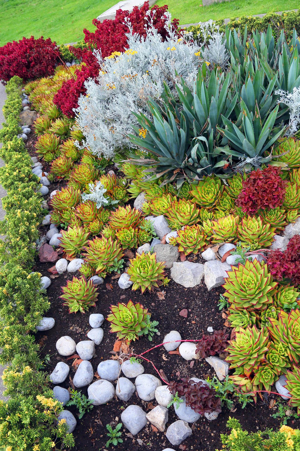 Jardines bot nicos respuesta factible para el rescate de for Jardines naturales