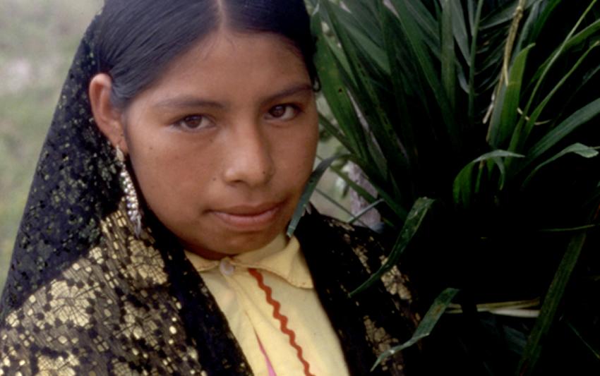 Etnografía de los pames de San Luis Potosí - Xi úi.