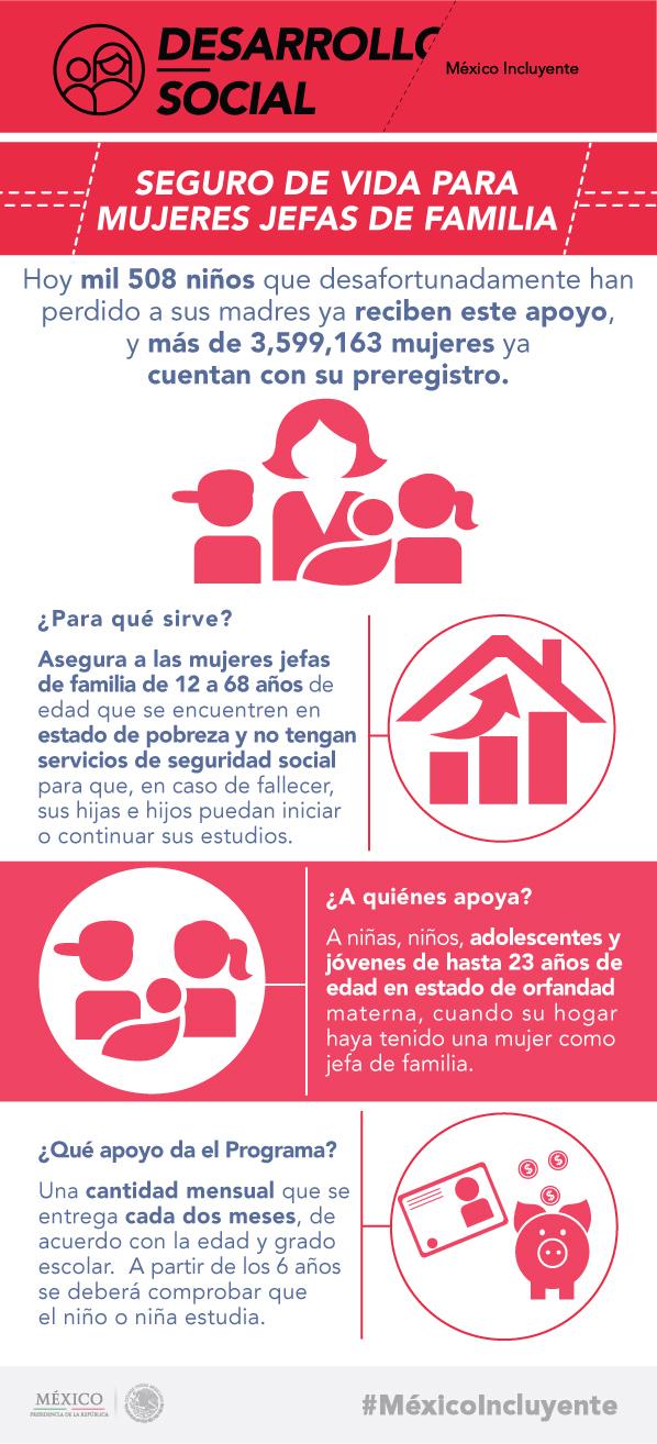 SEGURO PARA MUJERES MADRES DE FAMILIA11.jpg