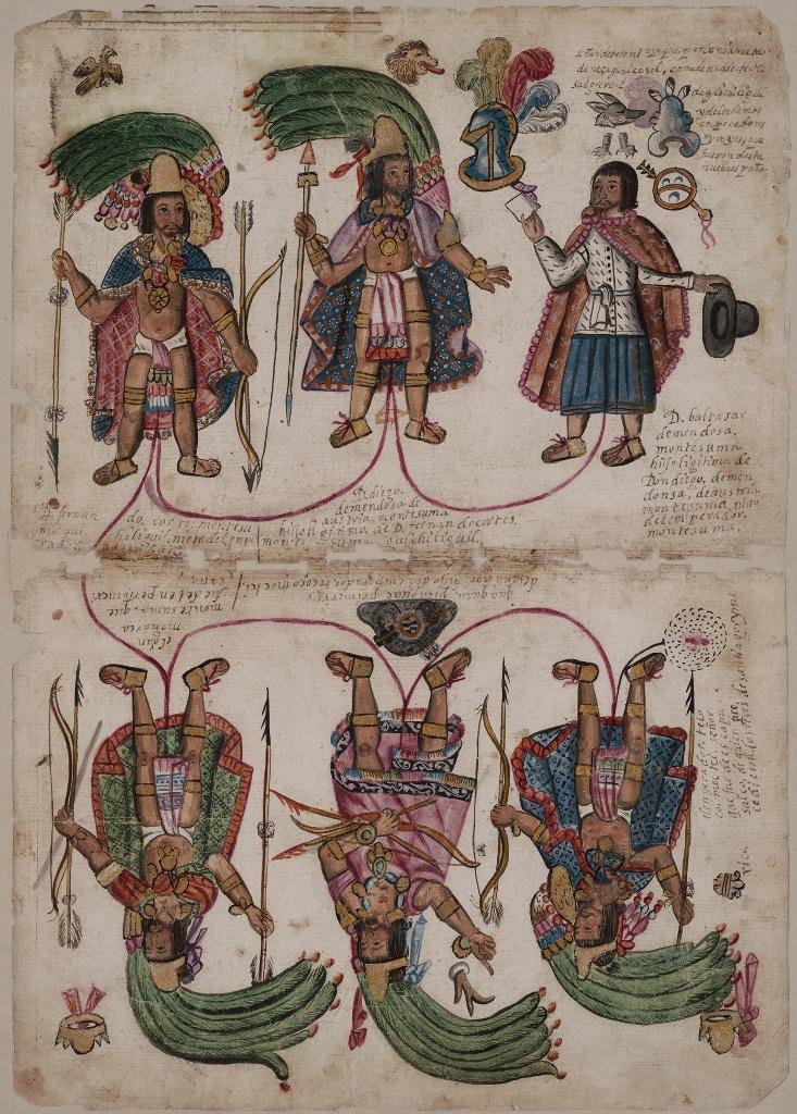 """Genealogía de Diego de Mendoza Austria y Moctezuma.  1707  Tierras, vol. 1586, exp. 1, f. 2 y 3 MAPILU, n. 01126. Archivo General de la Nación.  Frente a tus ojos se encuentra la genealogía de la familia Mendoza Austria Moctezuma desde su origen hasta Baltazar de Mendoza Moctezuma. El primer personaje que aparece es Tezozómoc, señor de Azcapotzalco, que en náhuatl quiere decir: """"en los montes de hormigas"""", por esta razón aparece una pequeña hormiga en la parte inferior del personaje.  Después aparece Cuacuahpichaguas, hijo de Tezozómoc, quien recibió de su padre el señorío de Tlatelolco convirtiéndose en el primer tlatoani de la ciudad. Los mexicas hicieron la guerra a Azcapotzalco y los derrotaron quedándose con el dominio y linaje que ellos ostentaban. Tlatelolco se quedó sin tlatoani hasta que el emperador Axayácatl nombró como señor de Tlatelolco a su nieto Cuauhtémoc, quien aparece en esta genealogía con el nombre de Fernando Cortés Moctezuma.  El gran emperador Moctezuma es el tercer personaje que aparece en la genealogía, y es tío de Cuauhtémoc, cuarto personaje de la dinastía. Cuauhtémoc se casó con una de las hijas de Moctezuma de nombre María. De esta unión nació Diego Mendoza Austria Moctezuma, quinto personaje de la familia, quien se ostentó como hijo del emperador de Tlatelolco, Cuauhtémoc, y nieto del gran emperador de México, Moctezuma.   Tras consumarse la conquista se ordenó que los gobernantes del México antiguo conservaran sus señoríos, por esta razón, Diego Mendoza solicitó al rey Carlos V que se le entregara el señorío de sus antepasados. Además ayudó a las fuerzas españolas en la expansión de su dominio hacia el norte. Por los servicios prestados a la corona española y su origen dinástico, Diego Mendoza de Austria fue nombrado gobernador perpetuo de Santiago de Tlatelolco para él y su descendencia, título que ostentó sólo por unos años.  Finalmente, aparece Baltazar Mendoza Moctezuma, hijo de Don Diego Mendoza, quien elaboró esta genealogía par"""