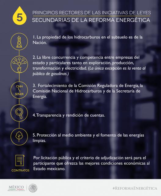 INFOGRAFIA PRINCIPIOS RECTORES 527x642.png