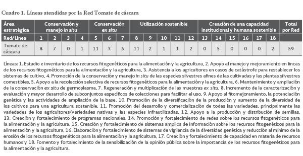 Tomate De Cascara Physalis Spp Servicio Nacional De Inspeccion