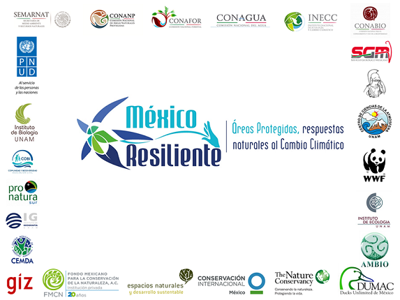 /cms/uploads/image/file/313453/Logos_Alianza_M_xico_Resiliente_-_mayo_2016.png