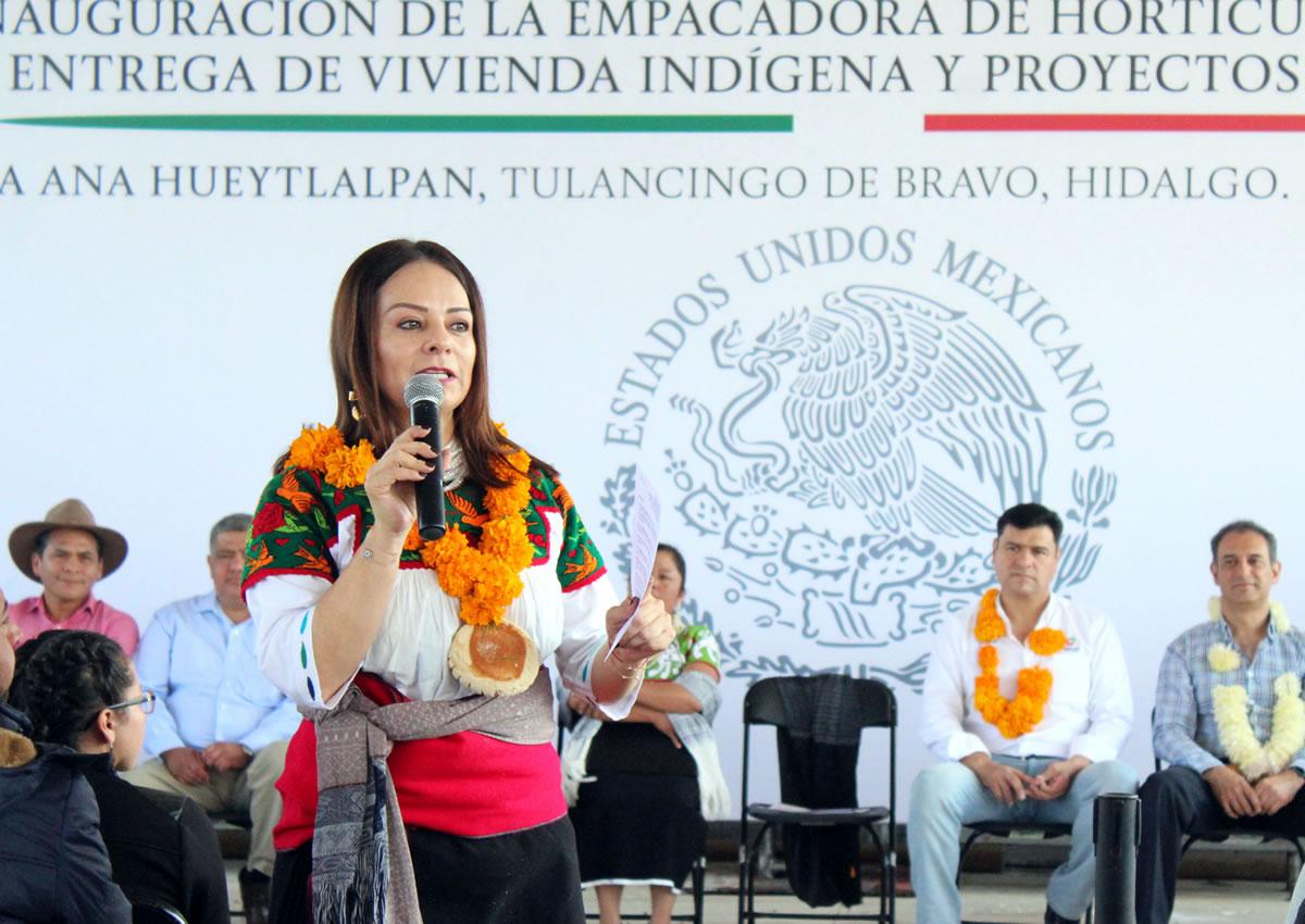 La CDI Impulsa elDesarrollo Económico de los Pueblos Indígenas.