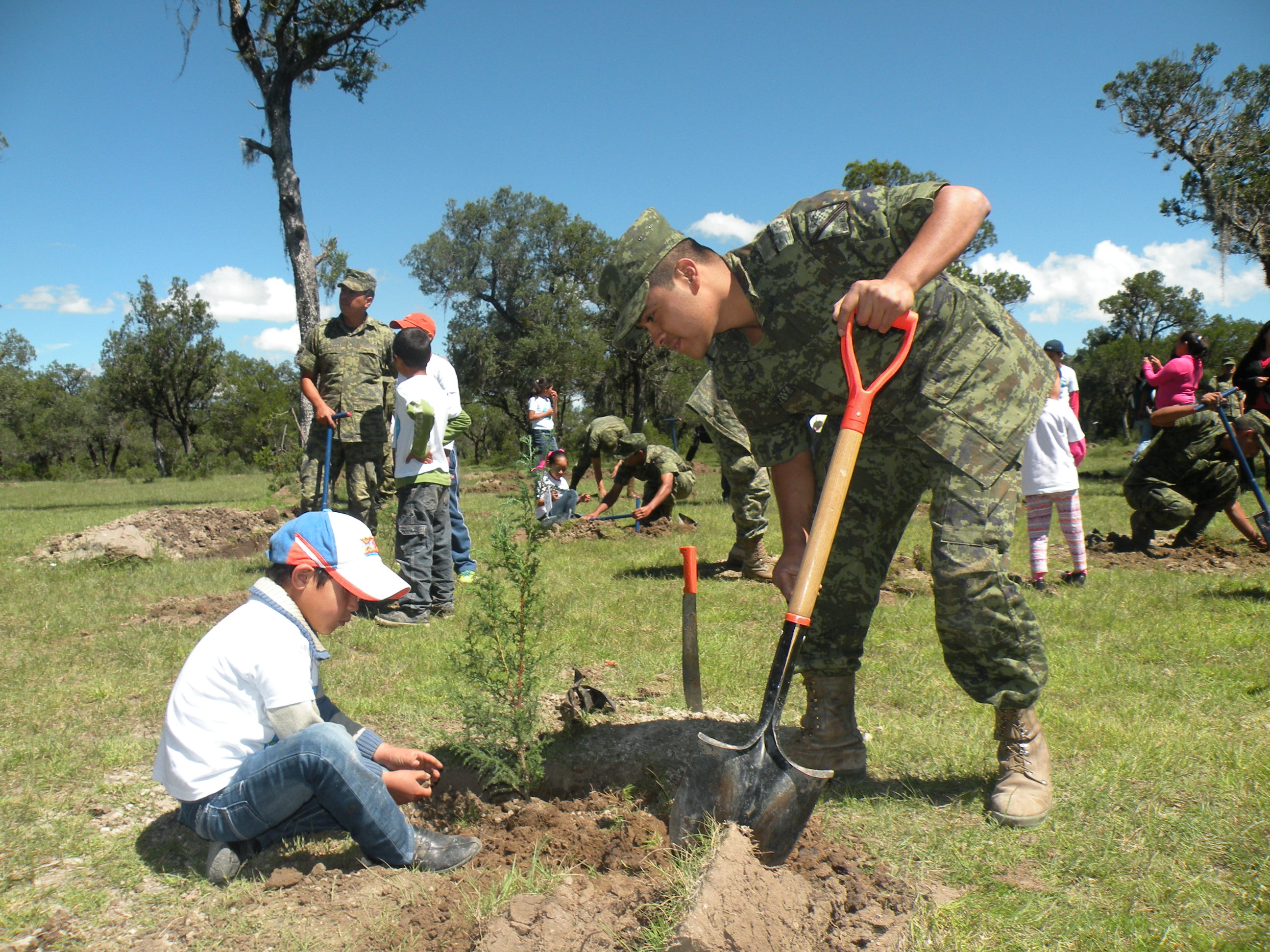 Orgullo por servir a m xico comisi n nacional forestal for Viveros forestales conafor