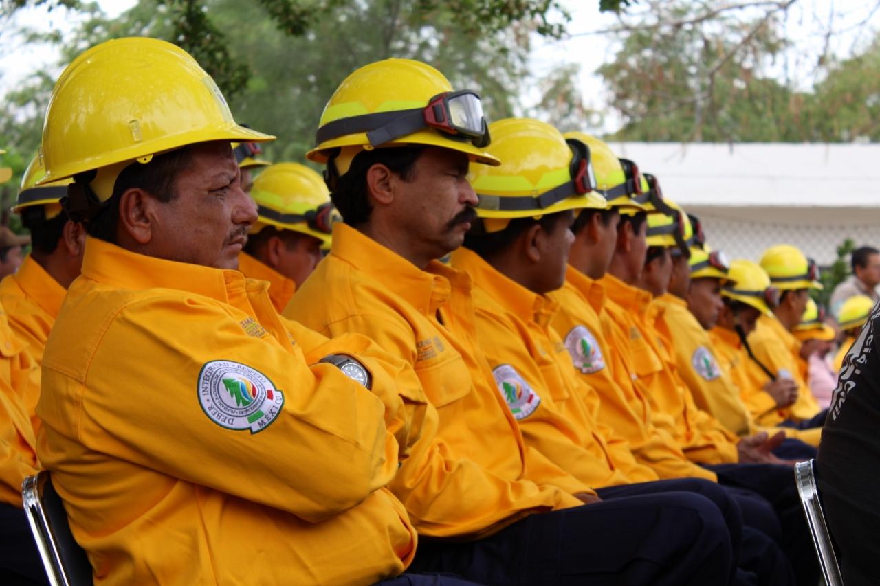 Destina conafor 17 3 mdp para desarrollo forestal en for Viveros en colima