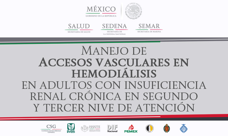 /cms/uploads/image/file/380458/ISSSTE-680-13_Mar_InsuficienciaRenalCronica.jpg
