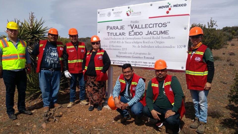 Obtiene certificaci n unidad productora de germoplasma for Viveros forestales conafor