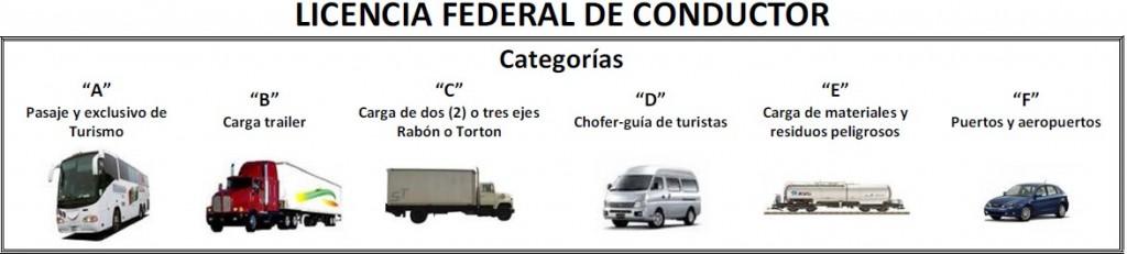 Tipos de Licencias para el conductor