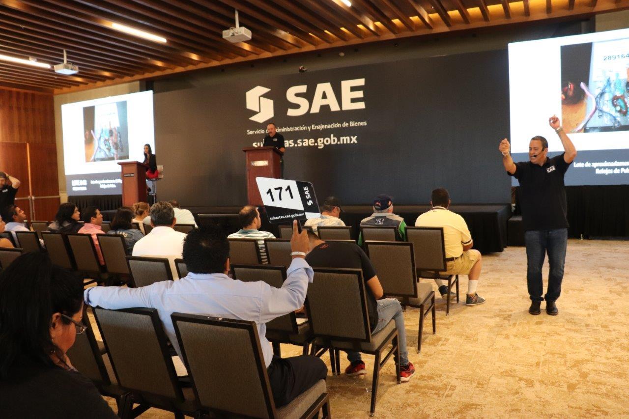 La imagen muestra, de espaldas, a un grupo de participantes en plena subasta realizando sus ofertas a viva voz y con paleta en mano.