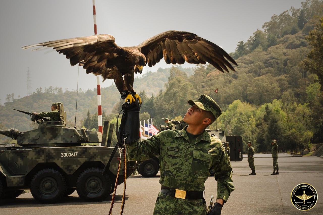 Militar del Ejército Mexicano con águila en mano.