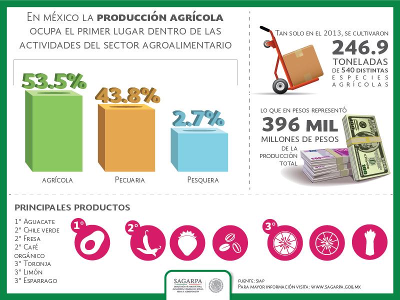 Infografia Produccion Agricolajpg