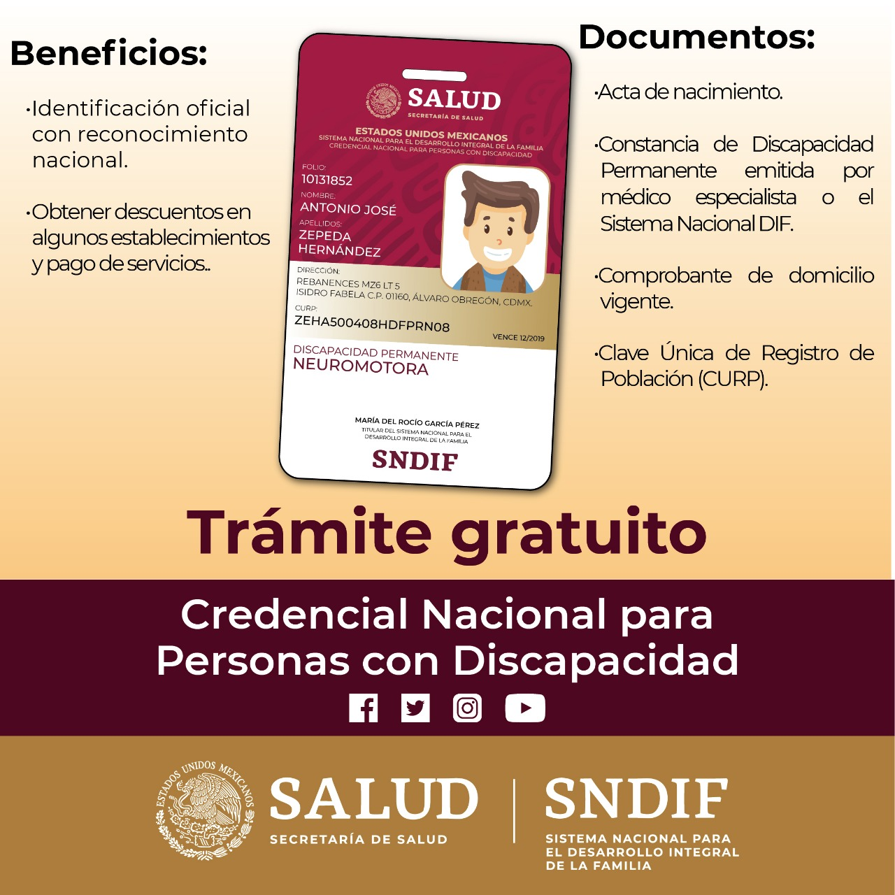 Credencial Nacional Para Personas Con Discapacidad Sistema
