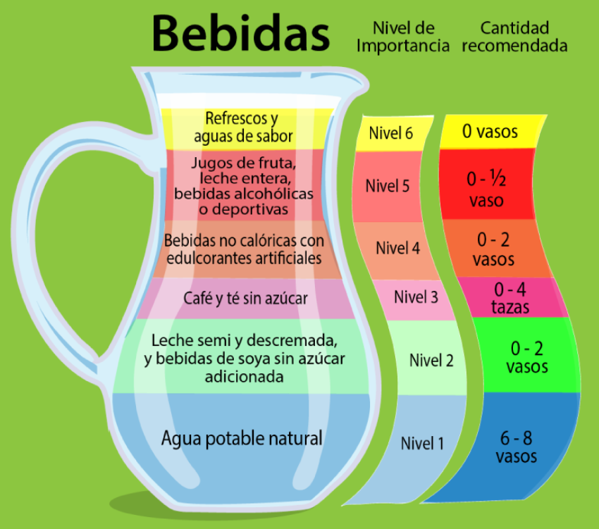 Beneficios de la jarra del buen beber   Instituto de Seguridad y Servicios  Sociales de los Trabajadores del Estado   Gobierno   gob.mx