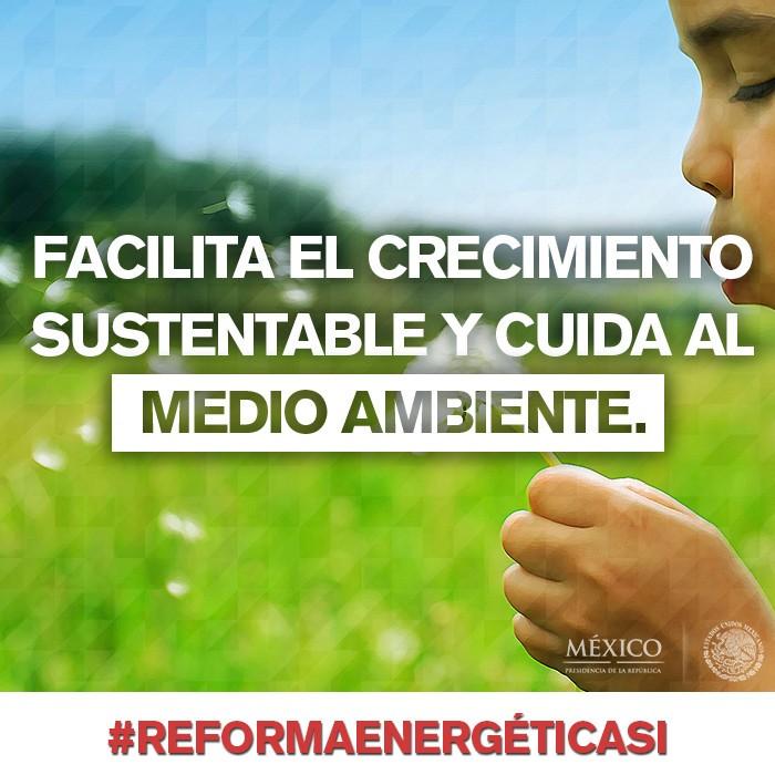 ReformaEnerge ticaSI MedioAmbiente.jpg