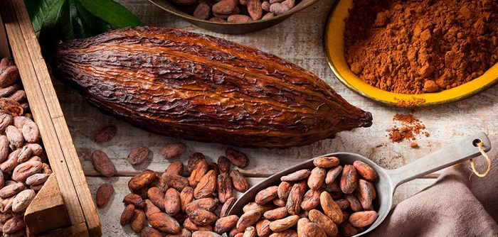 /cms/uploads/image/file/557211/cultivo-cacao.jpg