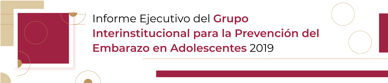 Informe Ejecutivo GIPEA 2019
