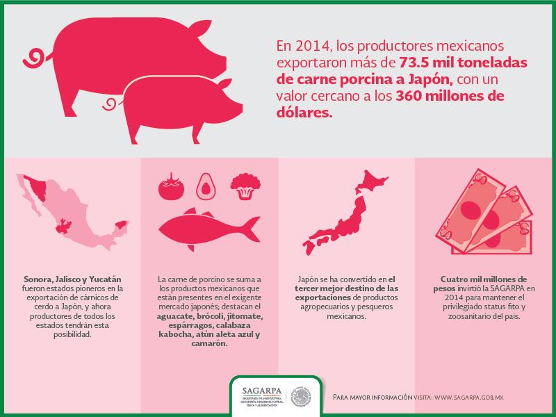 Infografia carne porcinojpg
