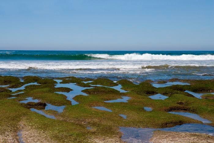 Playa Troncones Guerrero jpg