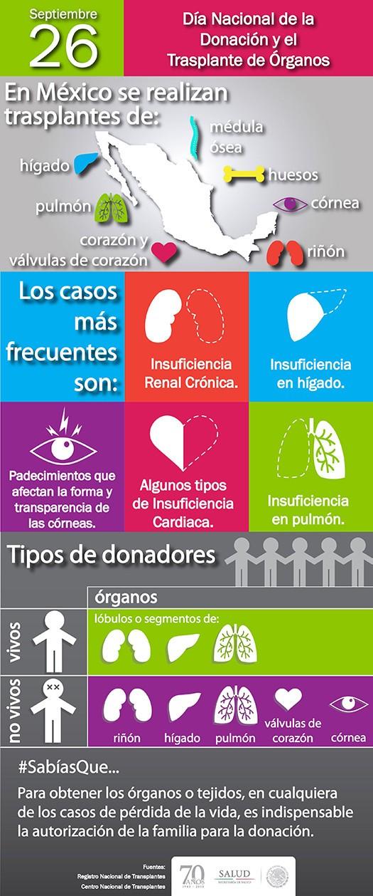 Transplante Organos 525.jpg
