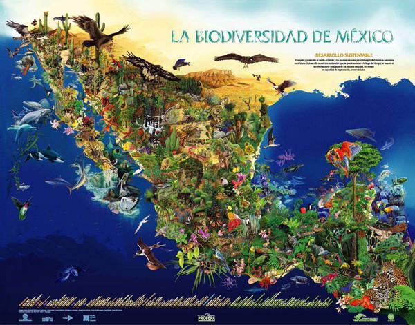 mapa biodiversidad de m xicopng