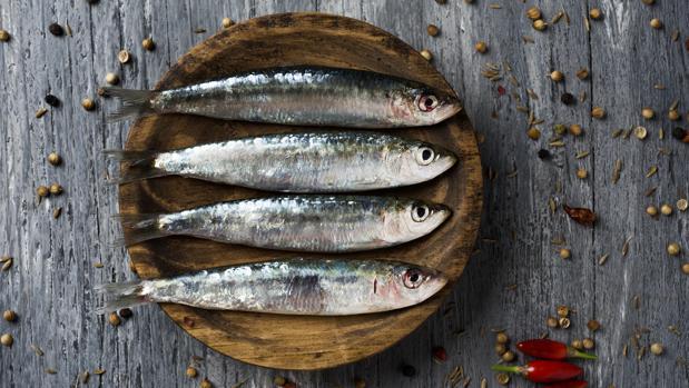 /cms/uploads/image/file/640505/sardinas.jpg