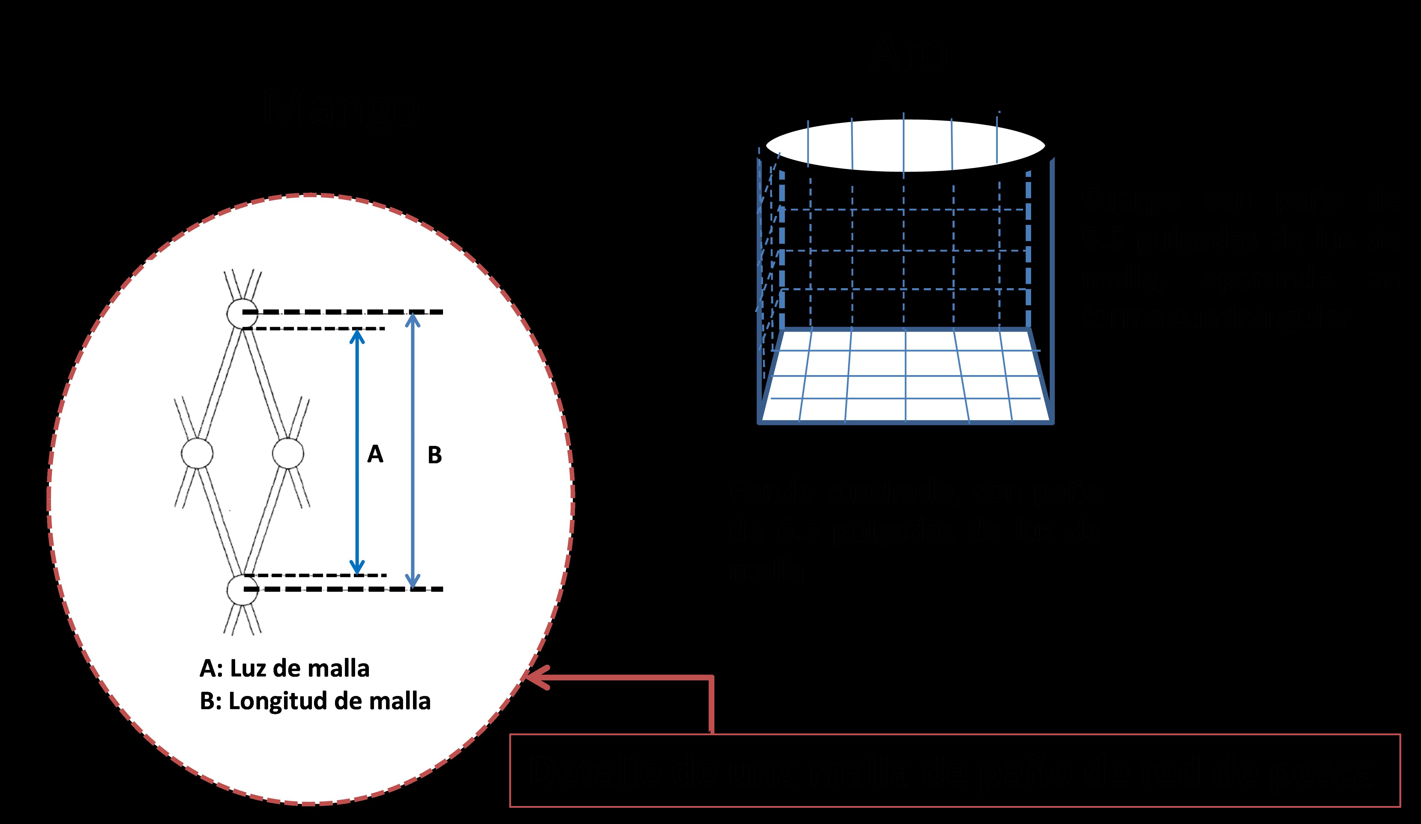 diagrama de red para captura de Medusa bola de cañón