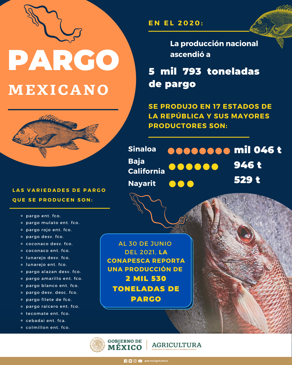 /cms/uploads/image/file/657251/INFO_PARGO_MEXICANO.png