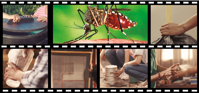 Acciones de chikungunya