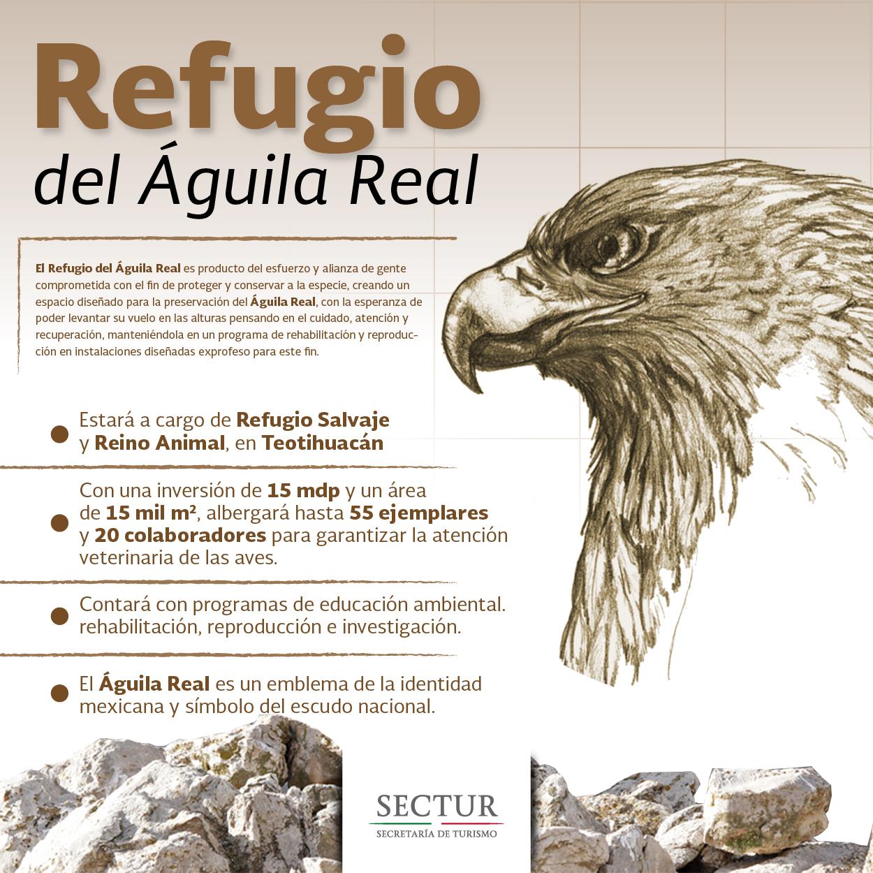info aguila real 01jpg