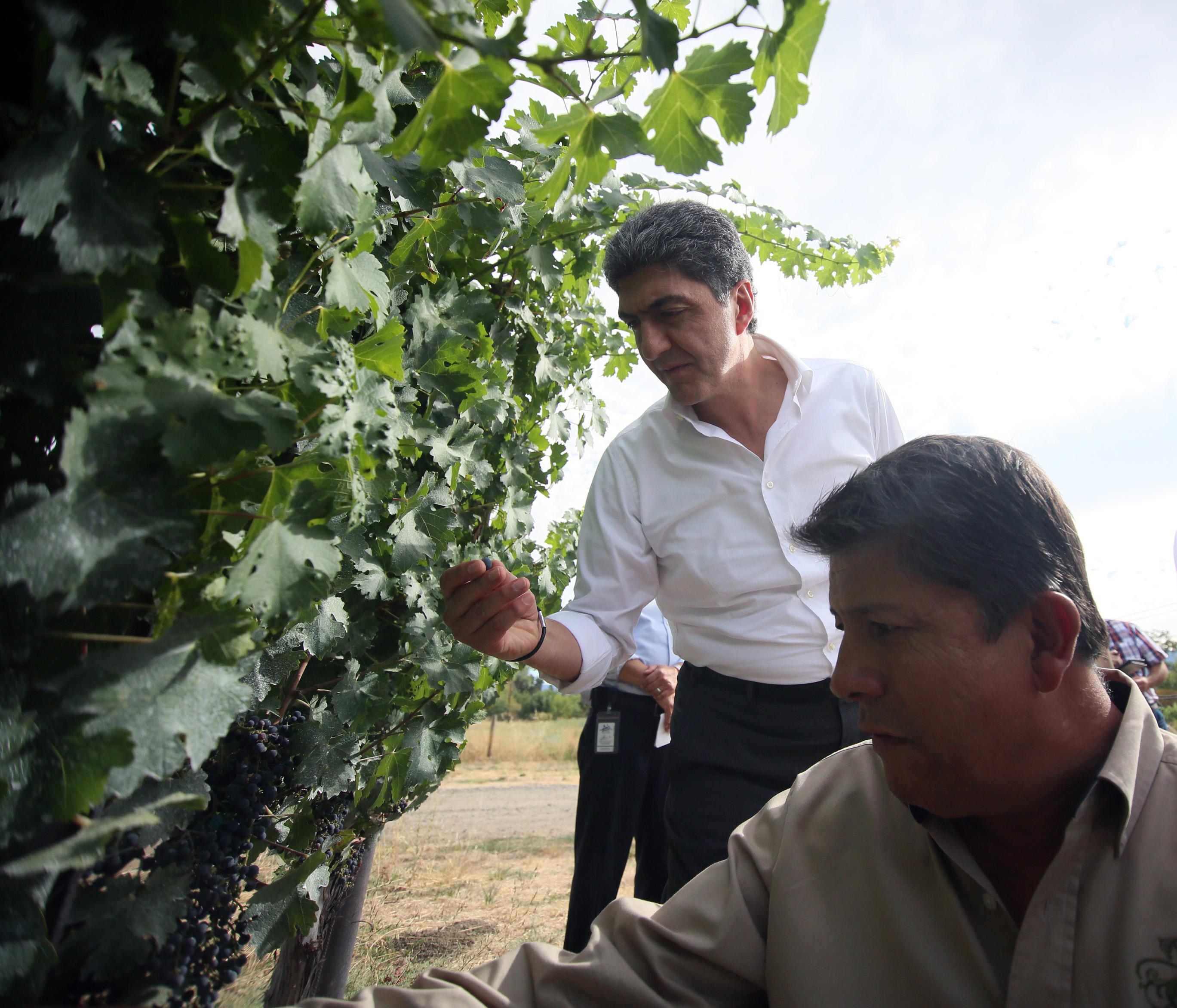 FOTO 2 Gobierno de la Rep blica en contacto permanente con paisanos migrantes.jpg
