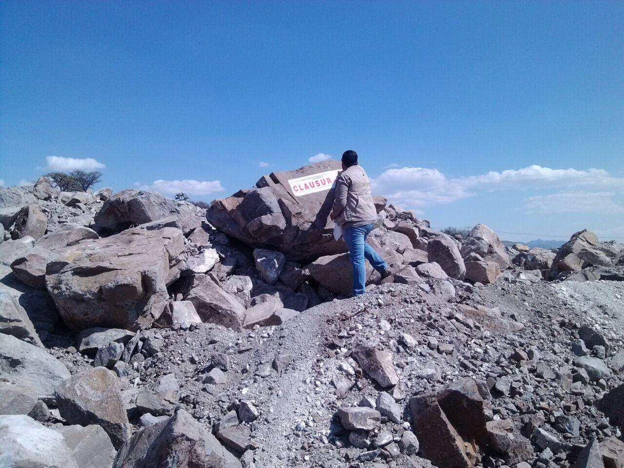 Clausura profepa ilegal construcci n de bodega en terrenos for Construccion de viveros forestales