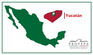 PROFEPA YUCATÁN