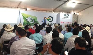 """el Director General de FIRA, Dr. Rafael Gamboa González impartió la conferencia """"Esquemas de Desarrollo de Proveedores para el Sector Agropecuario"""""""
