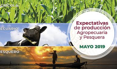 Expectativas de producción Agropecuaria  y Pesquera