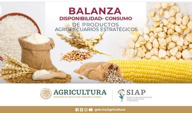 Balanzas disponibilidad-consumo de productos agropecuarios seleccionados