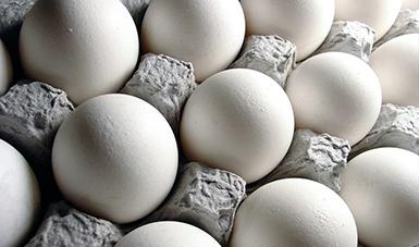 Boletín mensual de avances de la producción huevo para plato