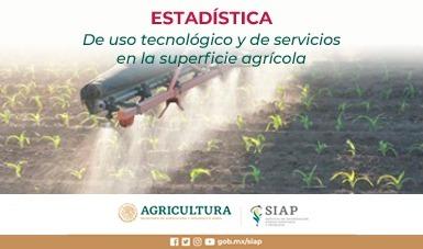 Estadística de uso tecnológico y de servicios en la superficie agrícola