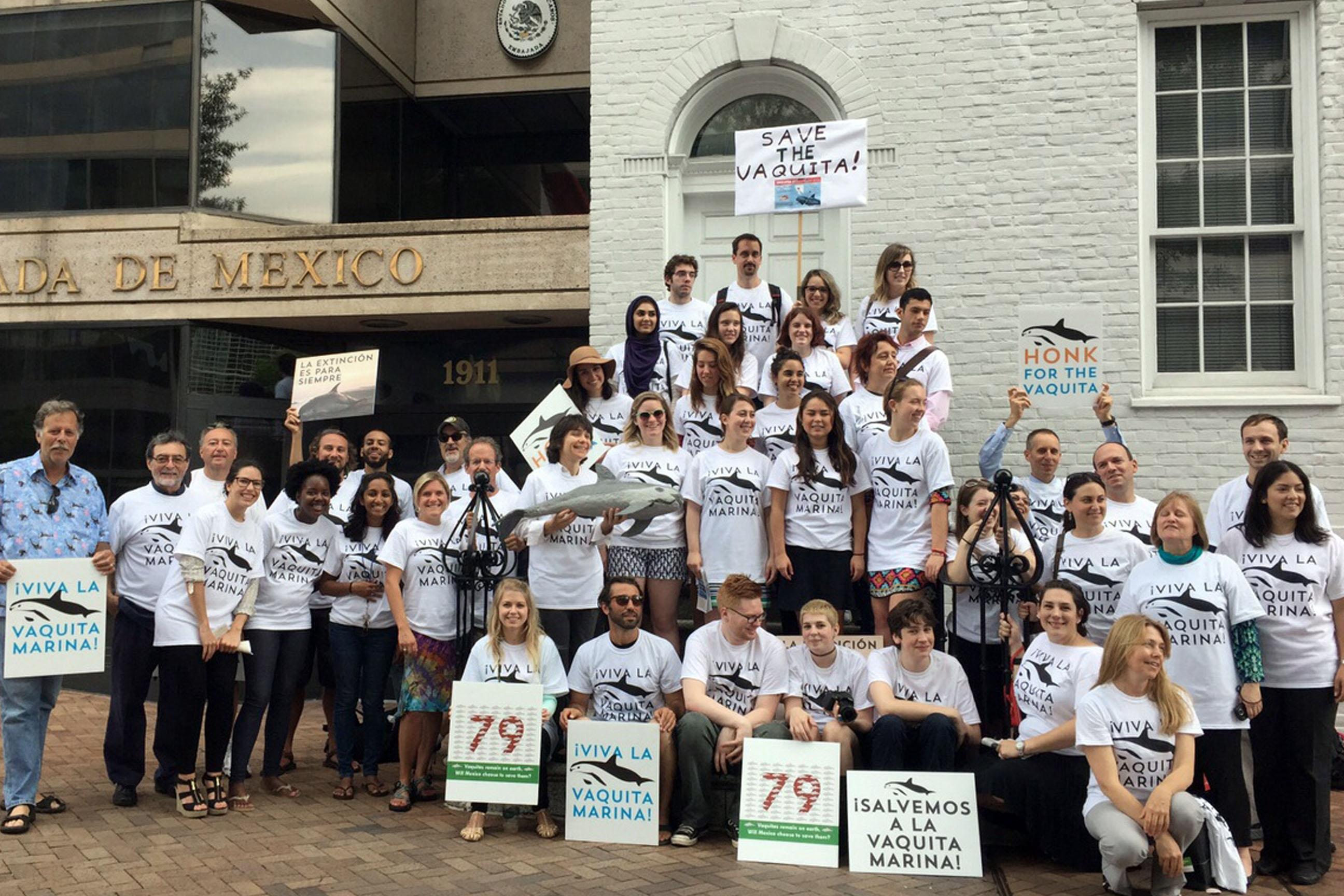 Reconocen ONGs trabaja de México para conservar vaquita marina.