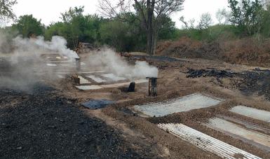 Suspende Profepa Actividades De Producción De Carbón Vegetal