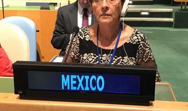 Dra. Mercedes Juan en la 10° Reunión de la Conferencia de los Estados Partes de la Convención sobre los Derechos de las Personas con Discapacidad